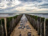 Aluminium Dibond 125×85. 'Golfbreker op het strand van de zeeuwse kust bij Dishoek. Wout Kok One2expose' van Wout Kok