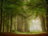 Aluminium Dibond 125×85. 'A Path for Everyone' van Lars van de Goor
