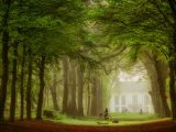 Aluminium Dibond 125×85. 'A Path for Everyone' van Lars van de Goor